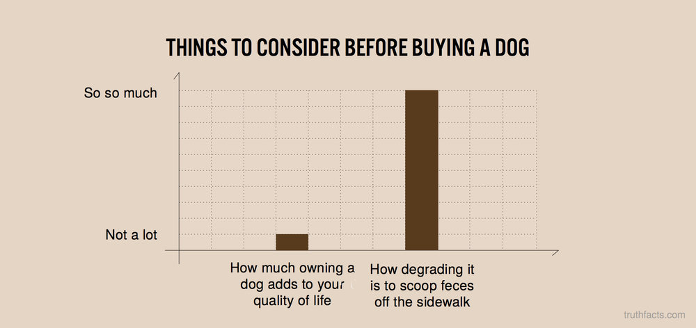 Things to consider before buying a dog