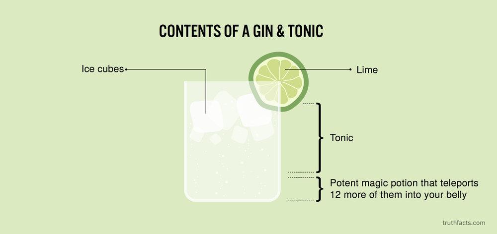 0804 Indholdet af en gin-tonic.jpg