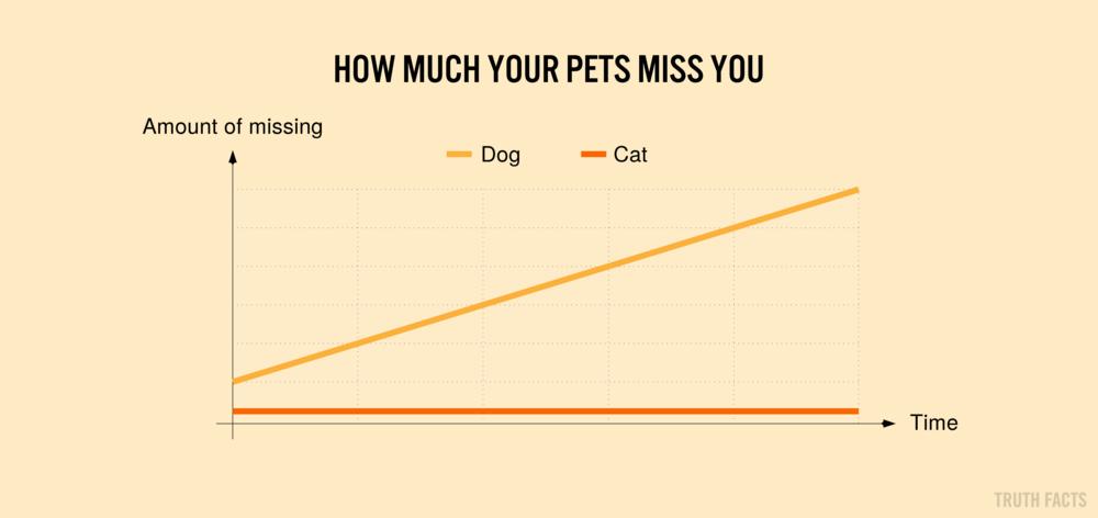 1568 US Hvor meget dine kæledyr savner dig.png