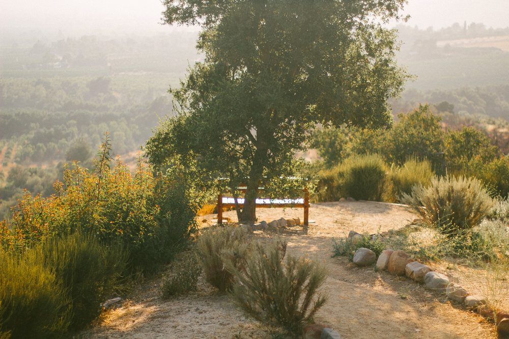 meditation mount ojai 5