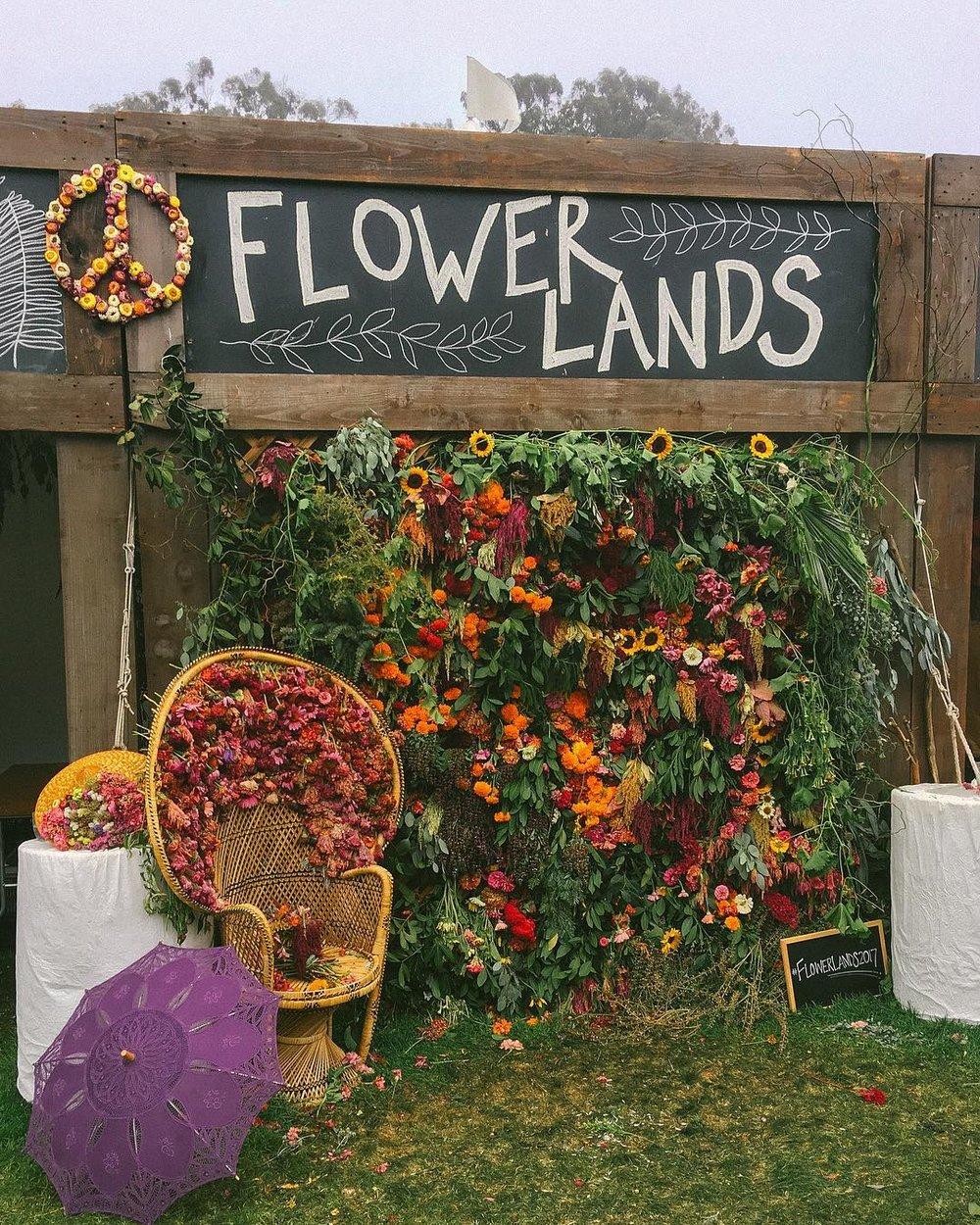 flower lands outside lands