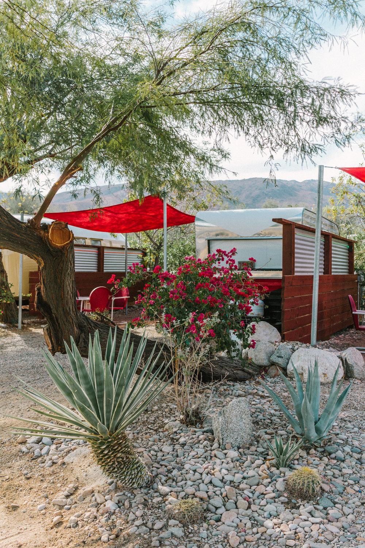 palm canyon hotel 9