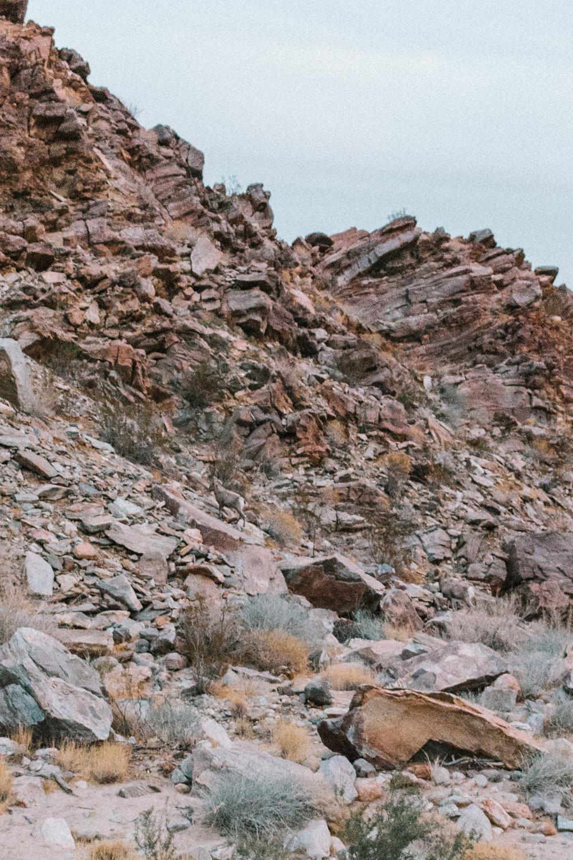 Anza-Borrego Desert State Park 2