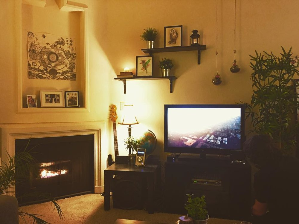 Making changes in 2015! We had just finished hanging the shelves/terrariums in our living room.