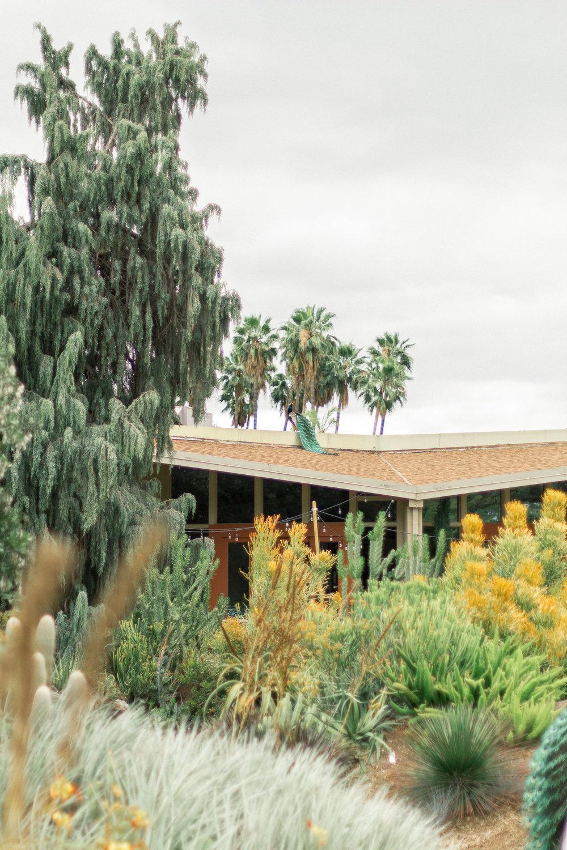 Los Angeles County Arboretum 3