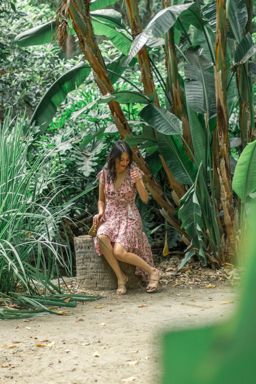 la arboretum 8