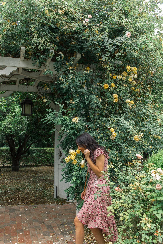 la arboretum rose garden 21