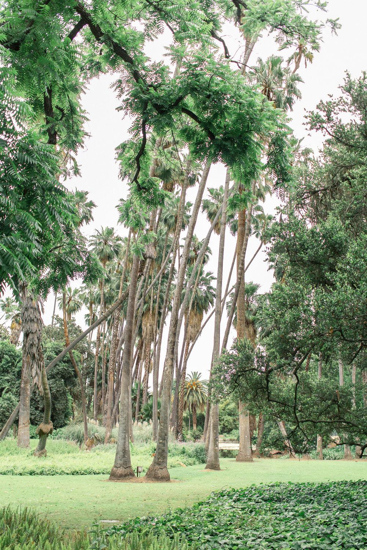 la arboretum 25