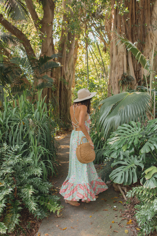 huntington library jungle garden 4