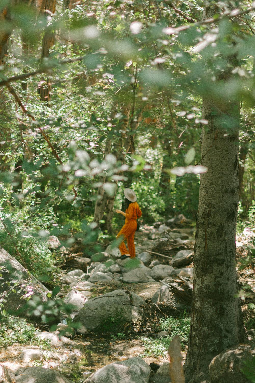 idyllwild strawberry creek path