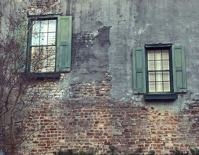 Charleston, South Carolina #Windows #walls #charleston #southcarolina #sc #shutters #green #grey #brick #delapidated #tree #branches #winter #thesouth #architecture #window #pane #downtown #historic #historicdistrict #artgallery