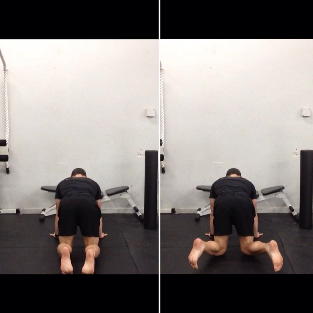 Quadruped Hip External Rotation