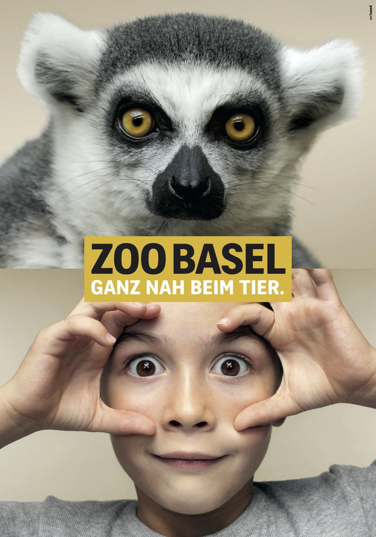 fs_arbeit_07_zooganznah_02_lemur.jpeg