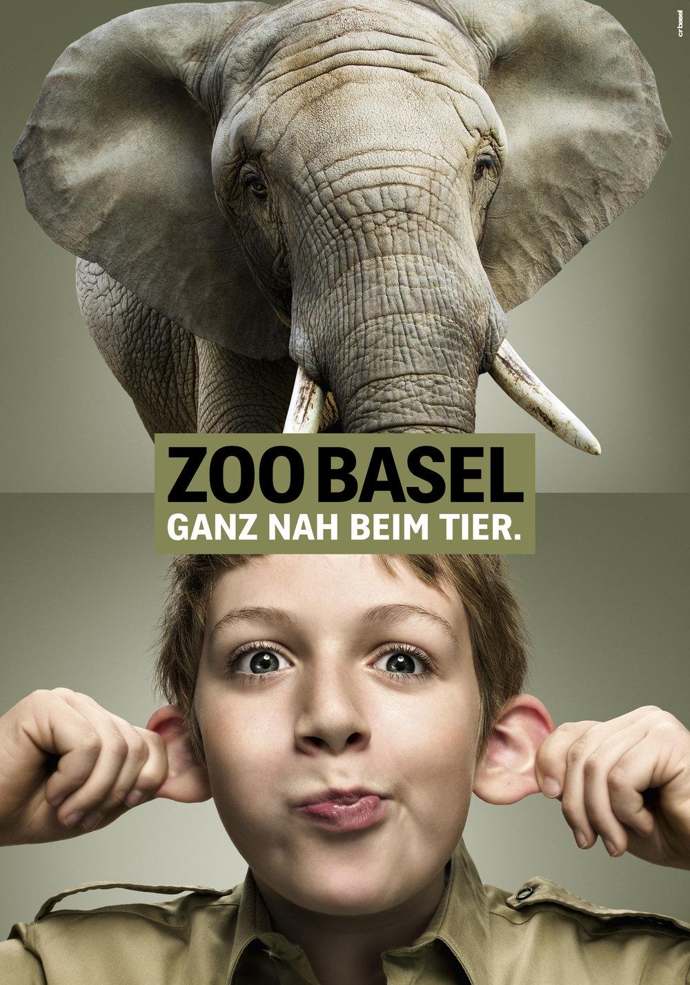 fs_arbeit_12_zooganznah_11_elefant.jpeg