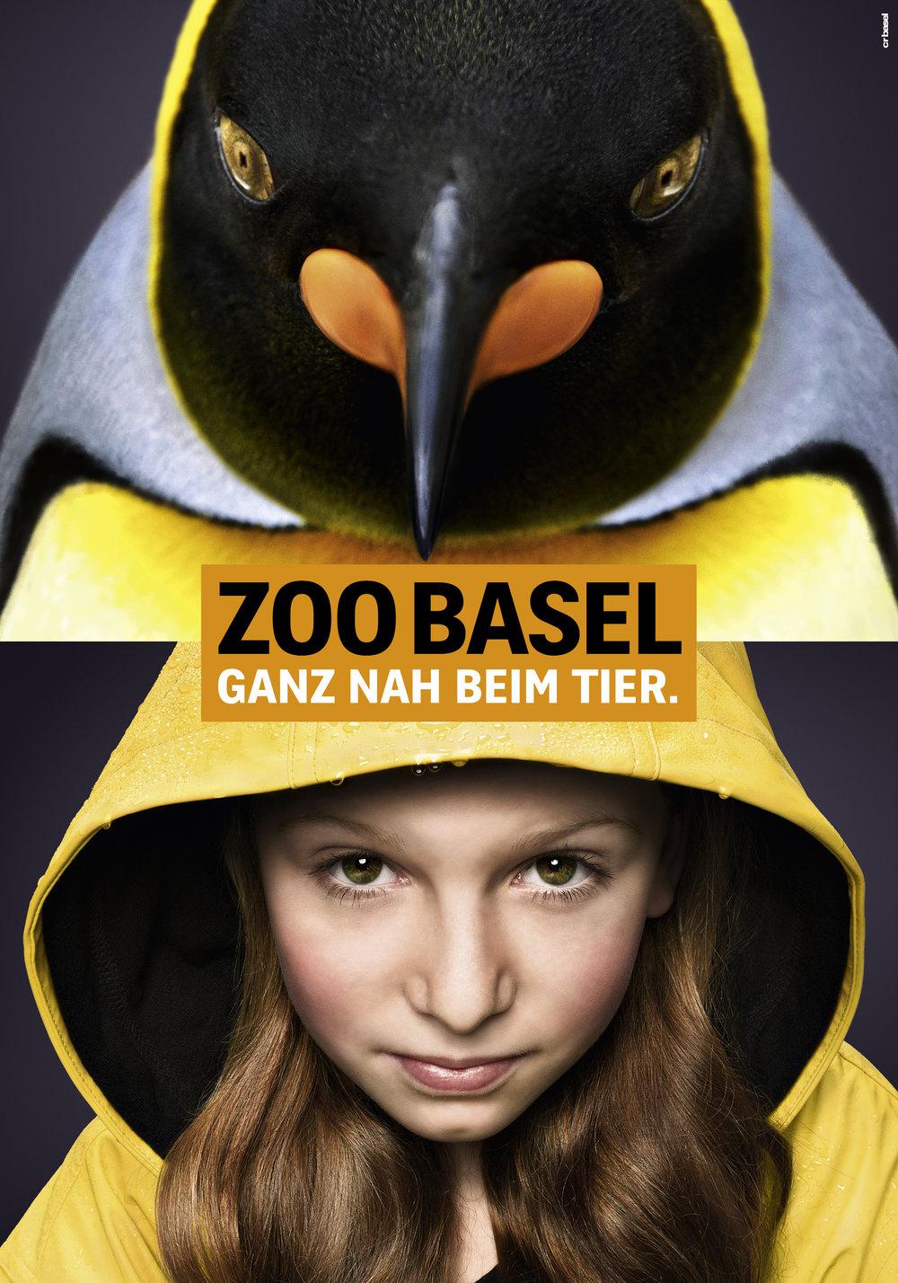 fs_arbeit_12_zooganznah_12_pinguin.jpeg