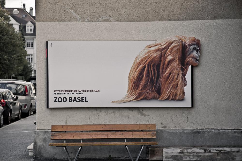 fs_arbeit_12_zoobasel_07.jpg