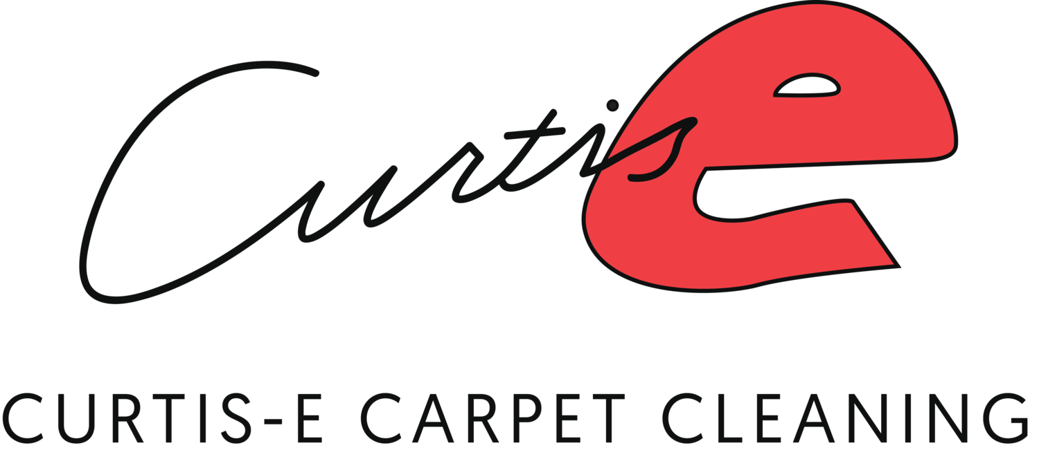 Curtis-E Carpet Cleaning