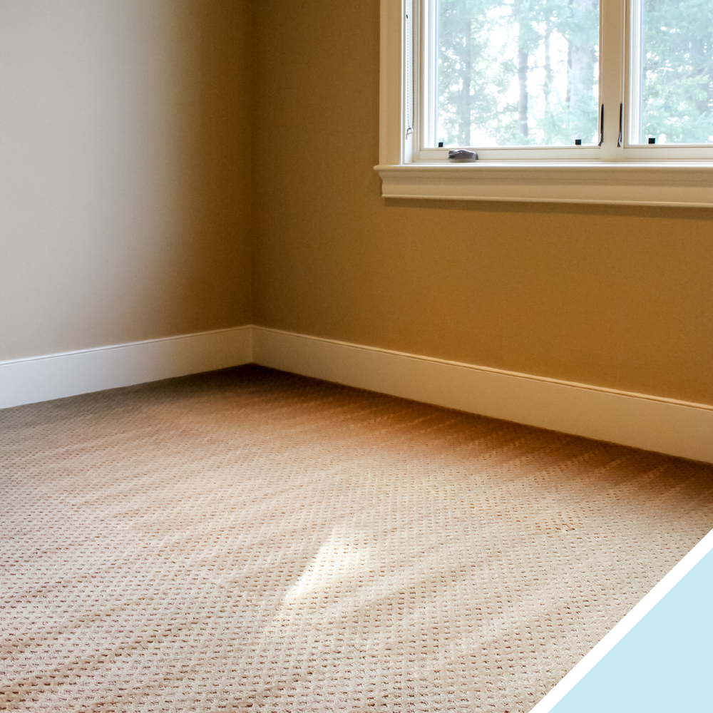 Prevent permanent damage from everyday mishaps like spills, splashes and stains.
