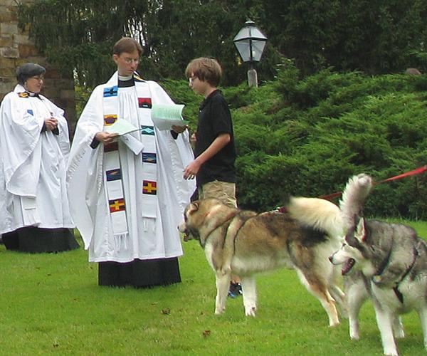 blessing-dogs-2.jpg