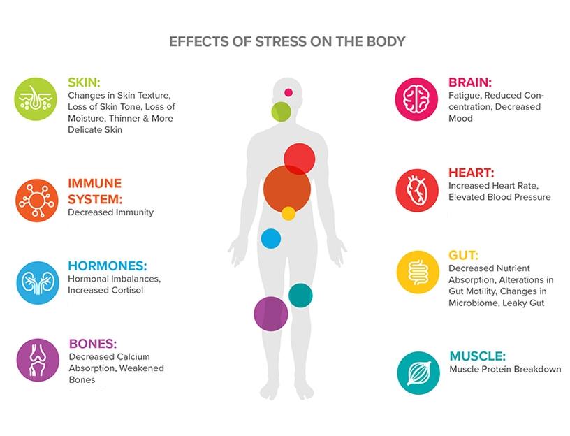 stress effects.jpg