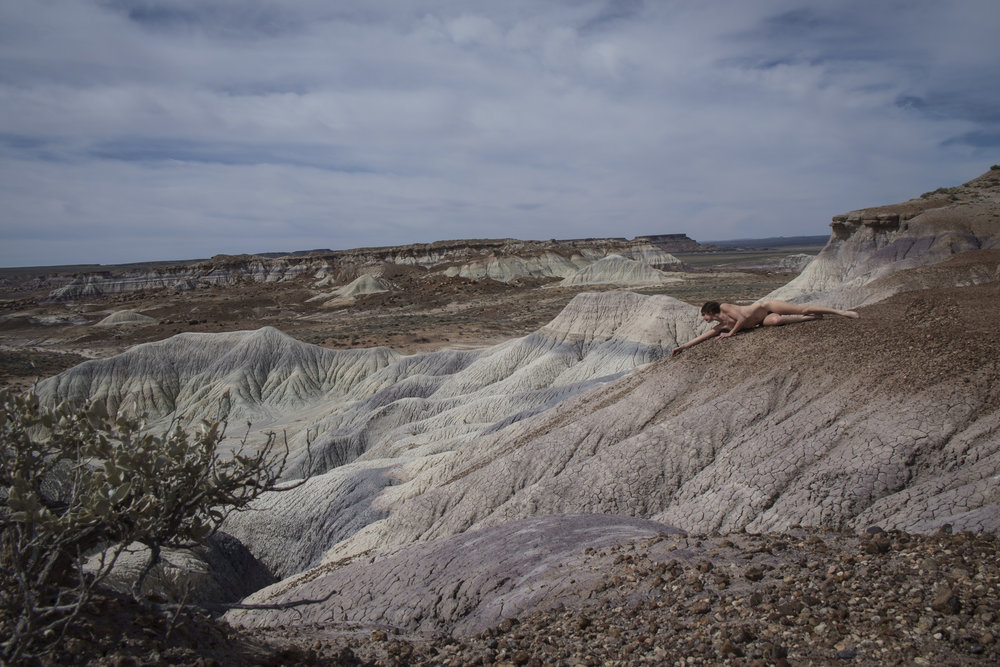 Petrified Forest National Park (2015)