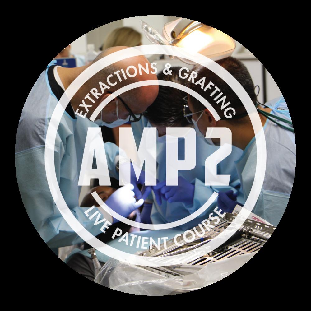 AMP-PLI(class)-02.png