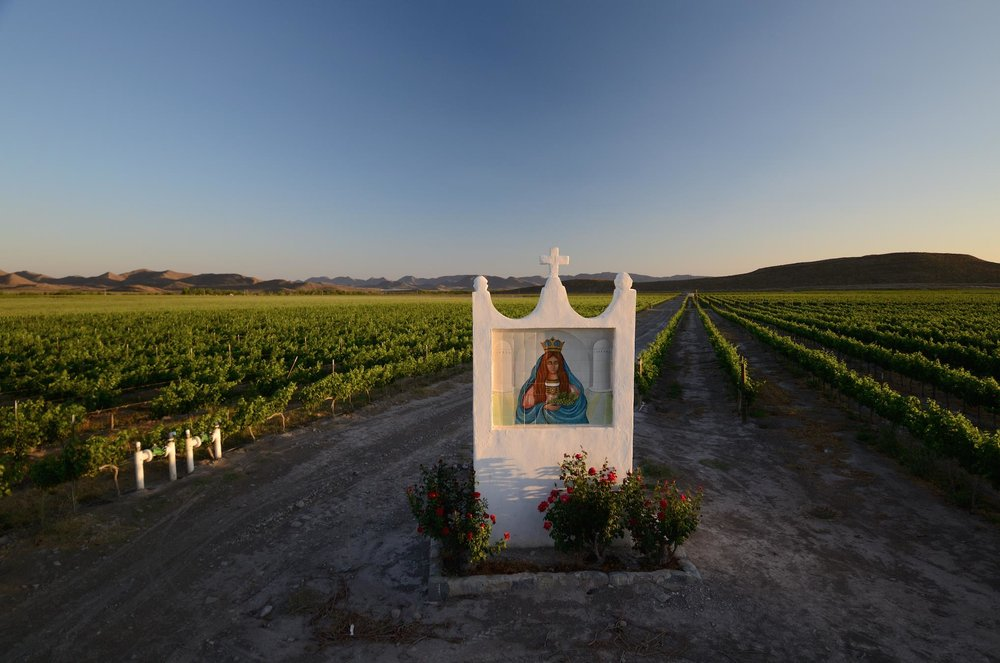 Founded by 16th-century Jesuit missionaries, Casa Madero is the oldest winery in the New World.