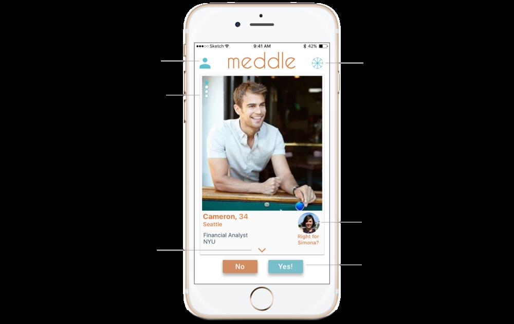 Meddle Meddler Profile Annotation 1.png