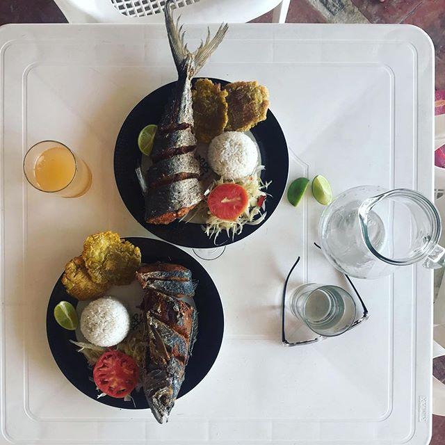 #almuerzo en la isla #pescado #arroz #tryingtolearnspanish @bombastichostel