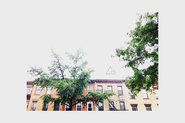 Rain rain go away... #thinkftgreene . . . . . @dinobrooklyn @coloniaverde #neighbors #community #workspace #calm #quiet #focus #productivity #coffee #quiet  #fortgreene #brooklyn #clintonhill #crownheights #cobblehill #downtownbrooklyn #bam #brooklynmuseum #brooklynnavyyard #brooklynart #brooklynartist #dekalbave #myrtleave #fultonave #stationery #paper #keepitlocal #goodmorning