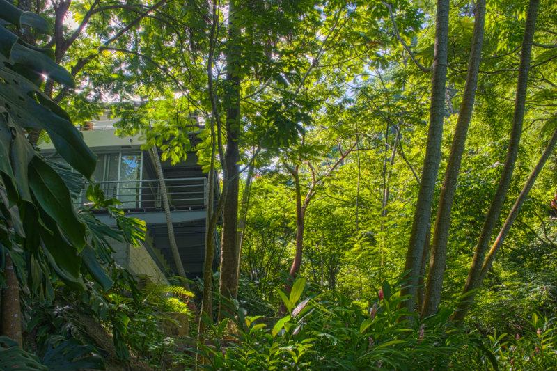 PVV website luxury villas gated community #9.jpg
