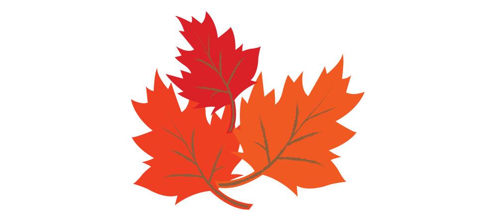 Leaves_9.jpg
