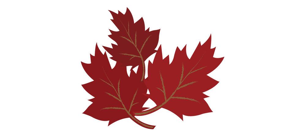 Leaves_11.jpg