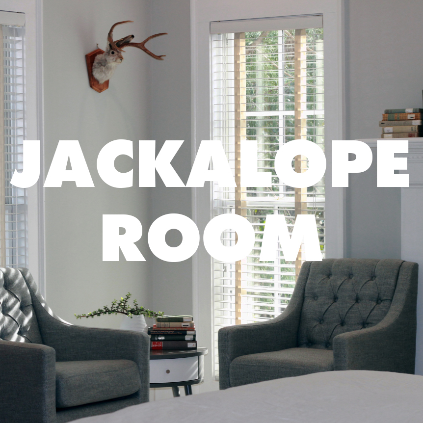 View Jackalope Room