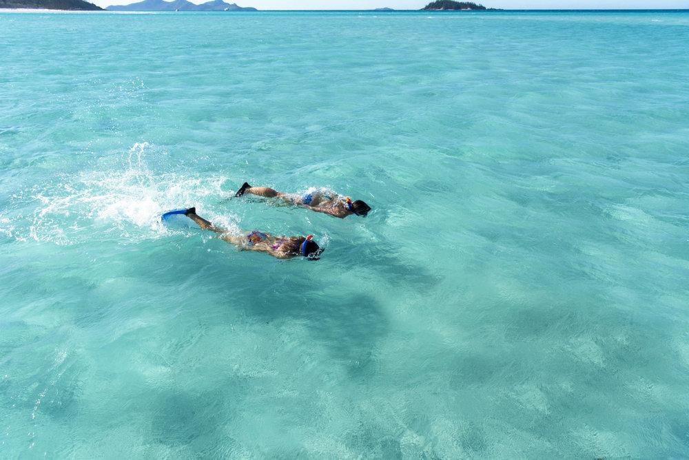 Diving SML.jpg