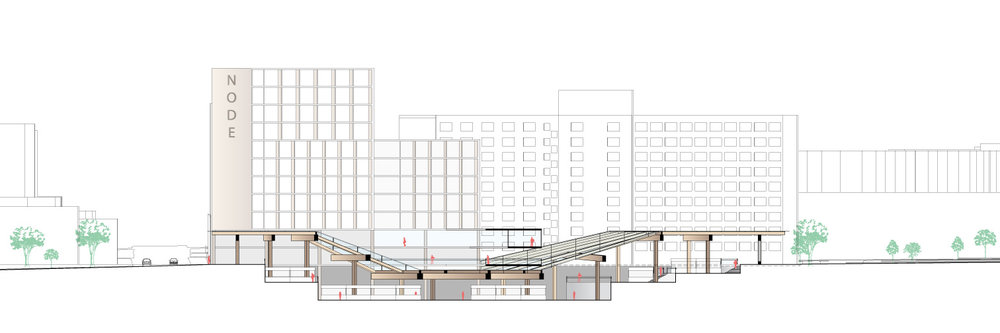 Section | Glass-timber canopy diving downwards, echoing the stepping of the subgrade market