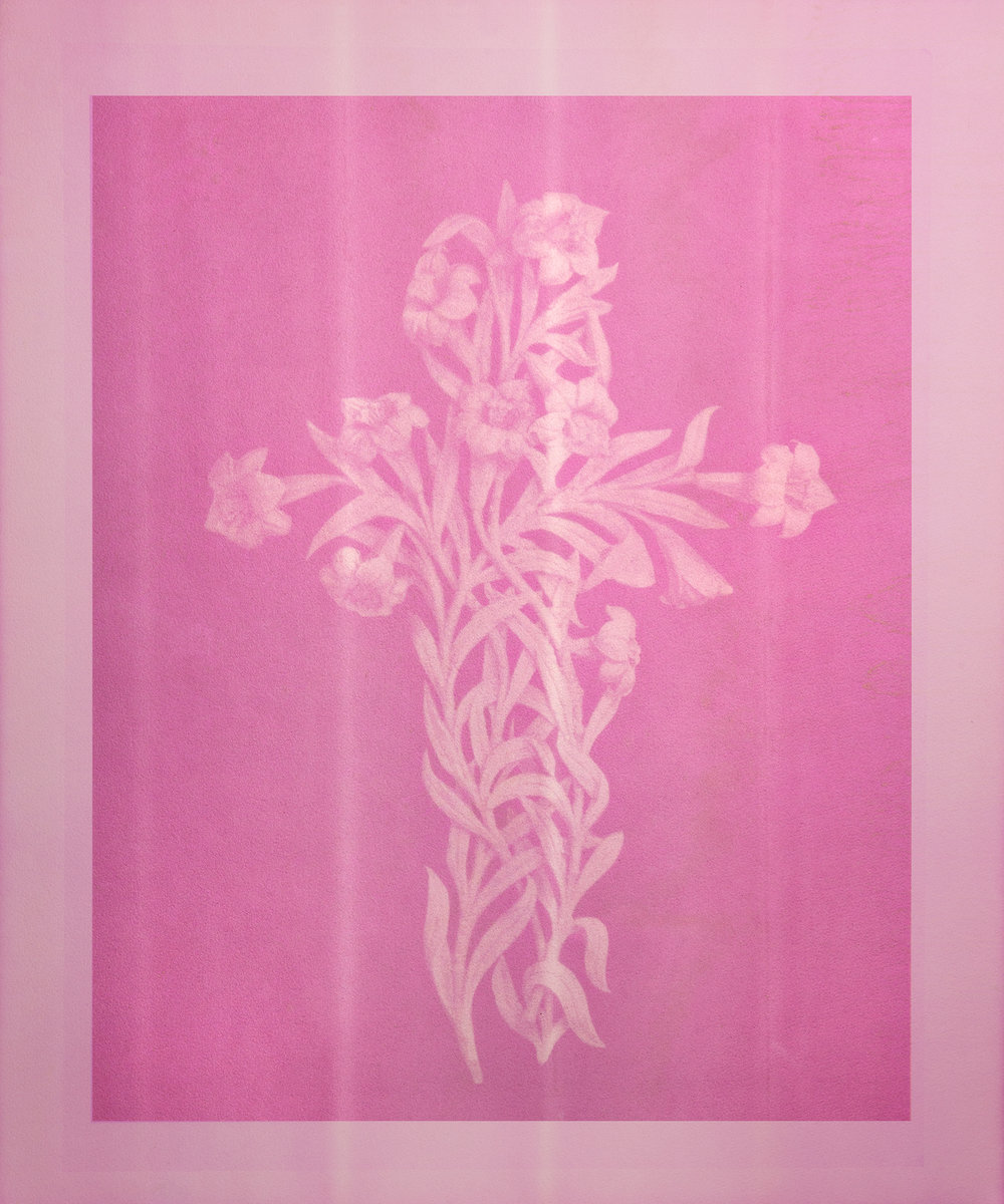 Limited Edition Print - Mary Dorthy Bain's Headstone Relief Study Pokeberry Anthotype Reproduction20 x 24 inches. Inkjet on 300GSM Fine Art Paper. Signed and Dated by Ryan Strand Greenberg. Edition of Five (numbered).