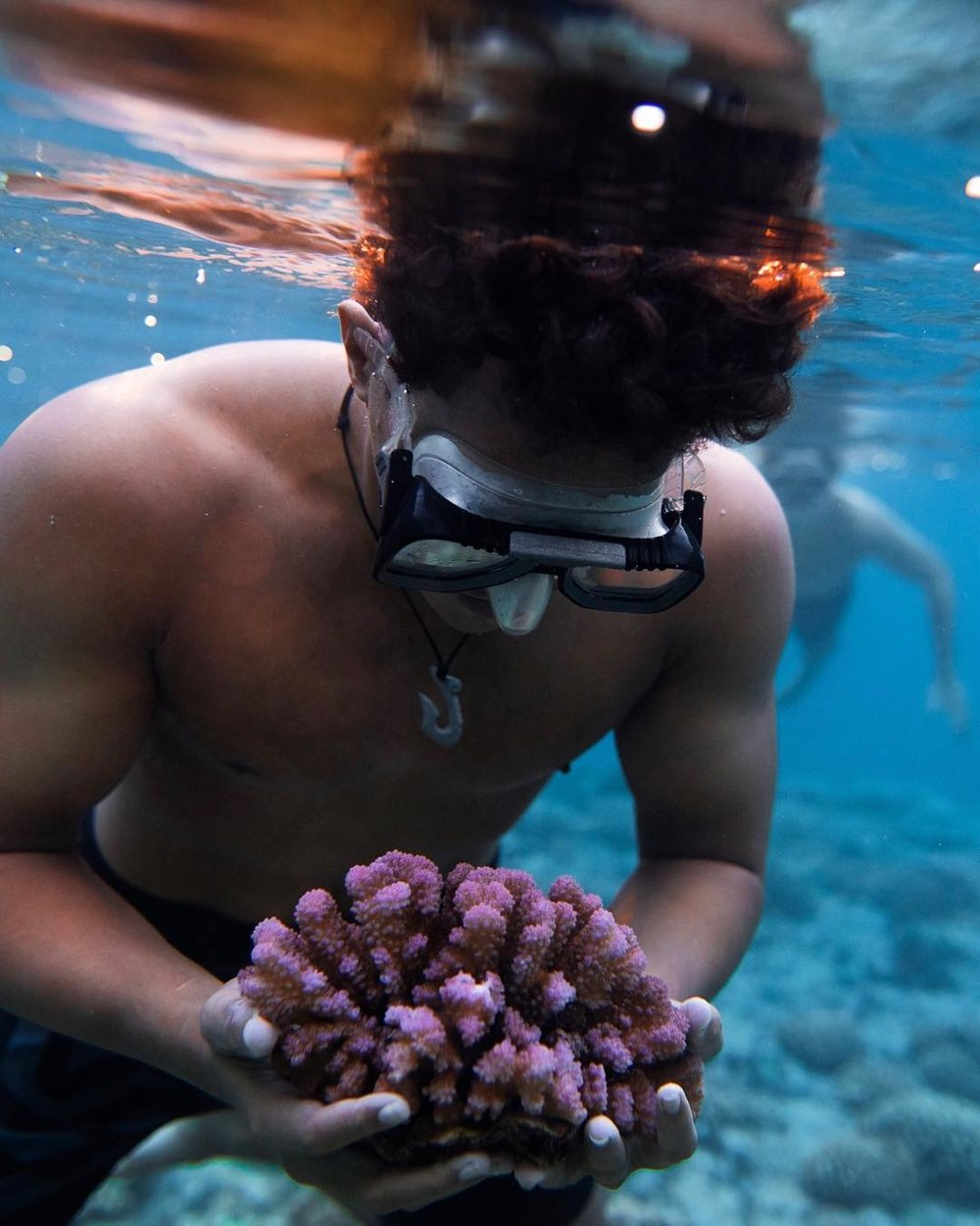 You can help save our oceans! - Adopt a Coral and contribute in the creation of a new coral reef in Moorea in French Polynesia!