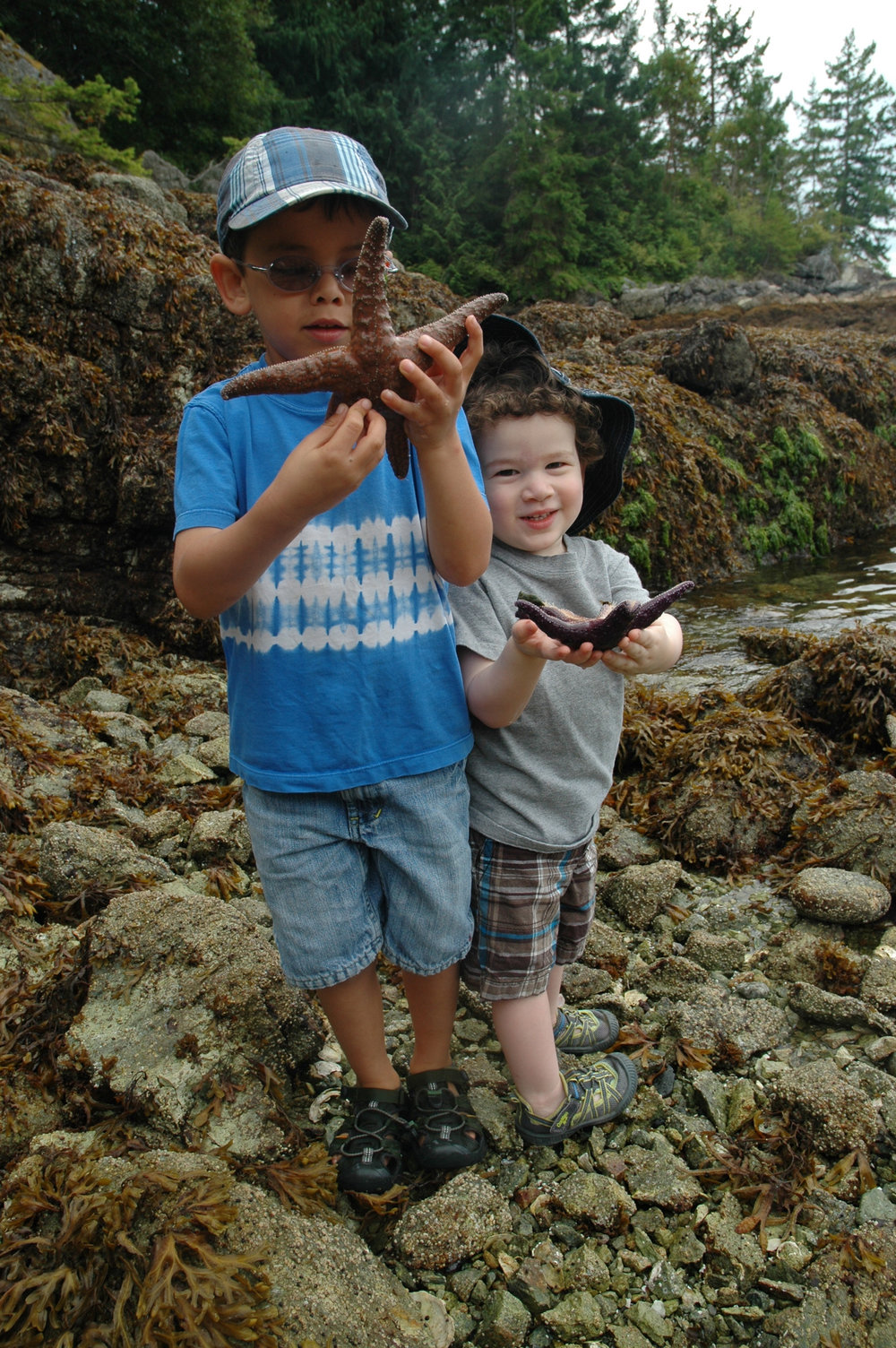 Cousins learning about starfish