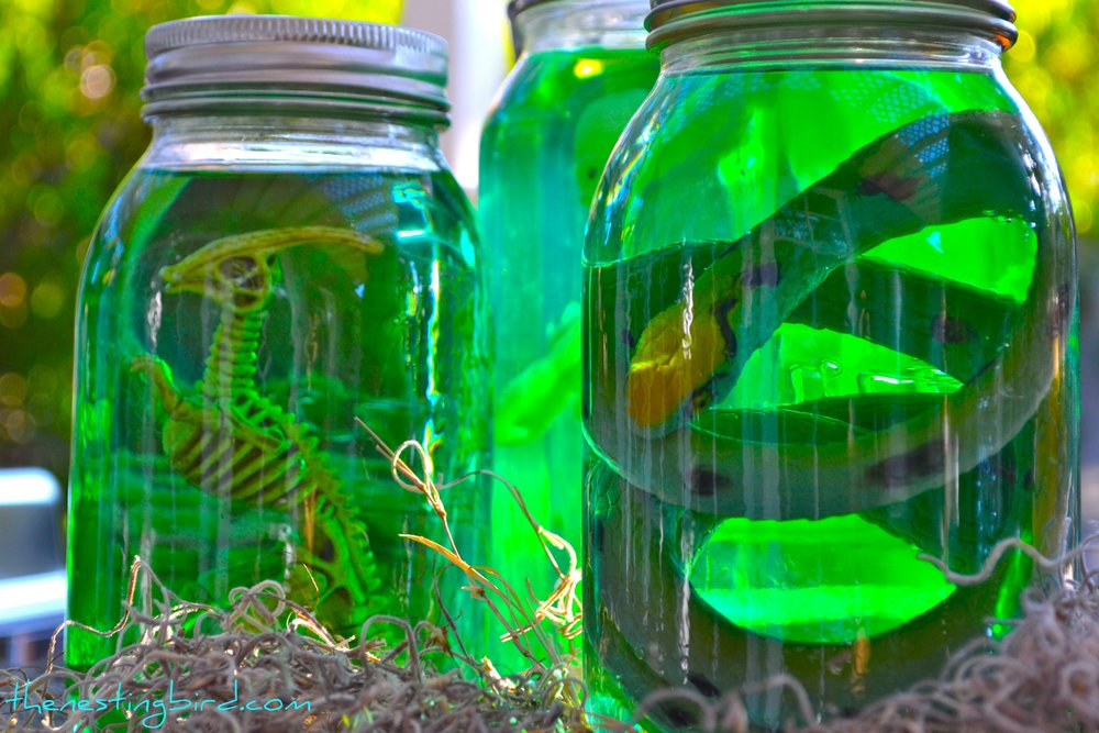 Specimen Jar