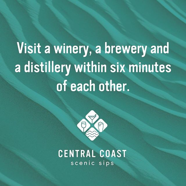 Are you looking for something to do over the weekend? 🍺🍷🍸 Consider partaking in #centralcoastscenicsips, a boutique artisan beverage trail consisting of @distillerybotanica, @firescreekwinery and @sixstringbrewingco. Best part? We're only 6 minutes apart from each other. Pick up your map from any of the venues 😁 #distillerybotanica #firescreekwinery #sixstringsbrewingco #visitthecentralcoast #thisisthecentralcoast #centralcoast #centralcoastnsw