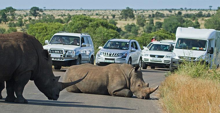 Beware of Roadblocks -