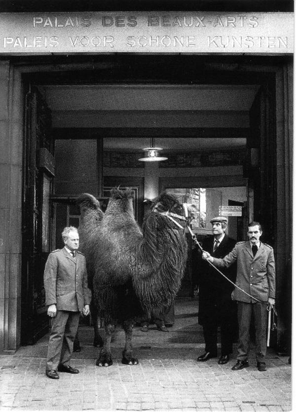 Broodthaers avec un chameau devant l'entrée du Palais des Beaux Arts, Bruxelles . Photo: Maria Gilissen Broodthaers