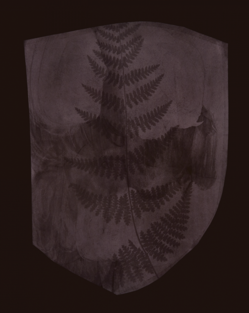 Hiroshi Sugimoto, Buckler Fern, March 6, 1839 or Earlier,  2008