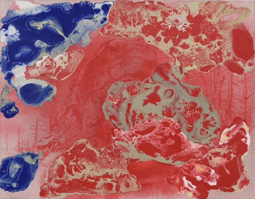 Skalisko – Psí hlava, 2016, kombinovaná technika na plátně, 95×115 cm
