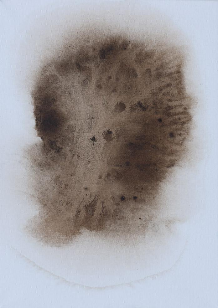 Hlava Medúzy, 2014, mořidlo na plátně, 70×50 cm