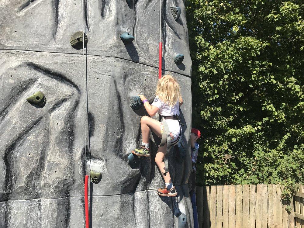 Willow Climbing.jpg