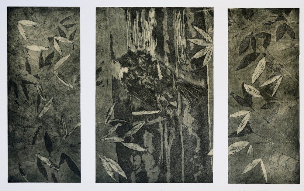 Intro to printmaking-Intaglio, Spring 2016