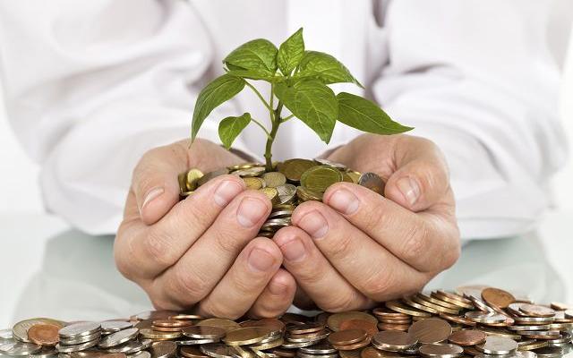 financial-planning-tree.jpg