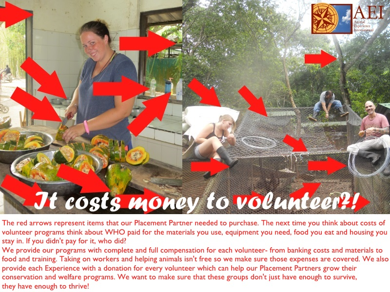 It costs money to volunteer